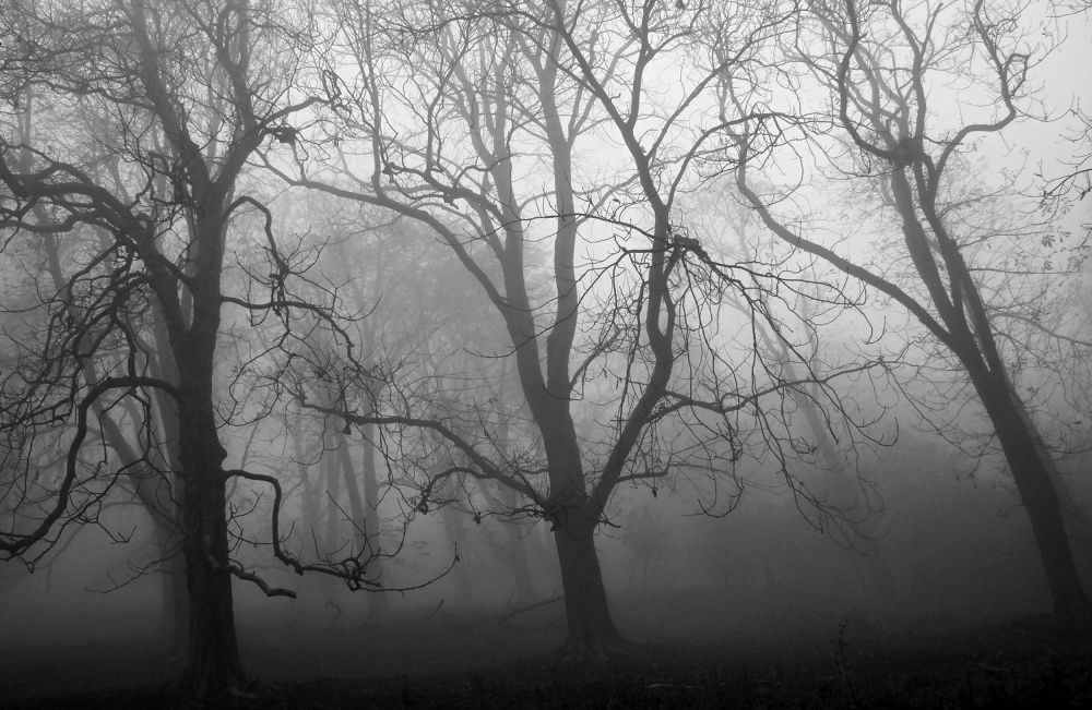 Scary mist by Stenly Priesol