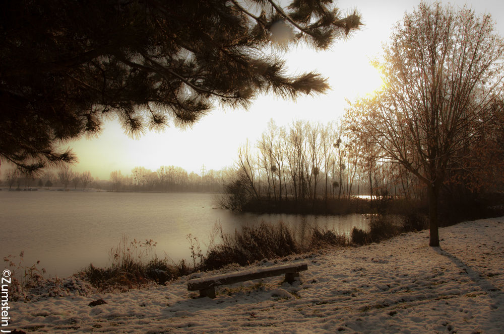 hiver by Zumstein Jacqui