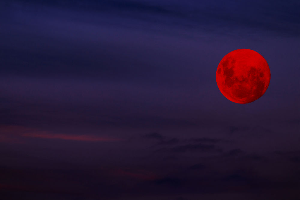 Red Moon Rising by Tracy Jones