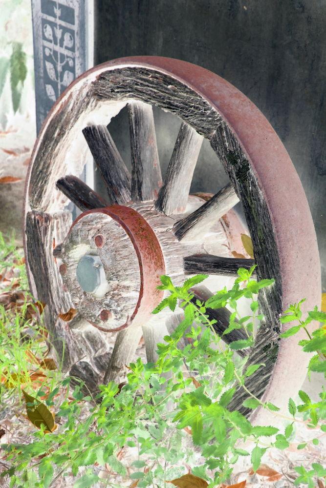 Old Wagon Wheel by Tracy Jones