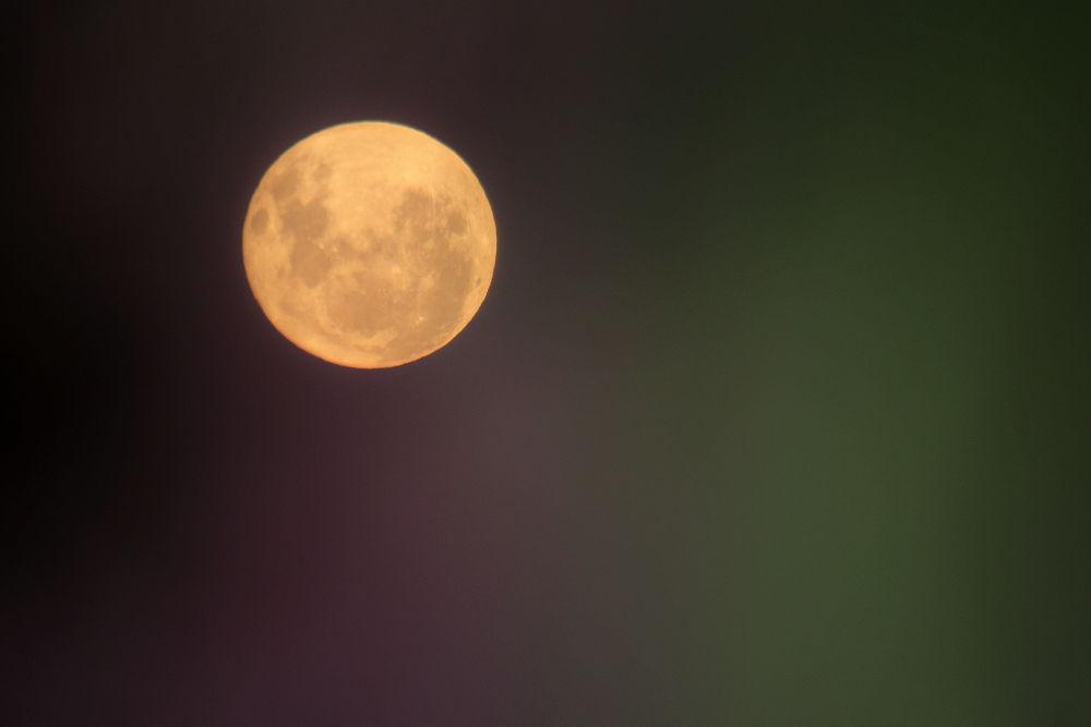 Full Moon  by Tracy Jones