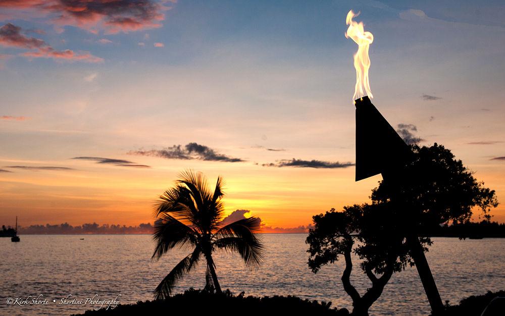 9-06-Tiki Torch by shortini
