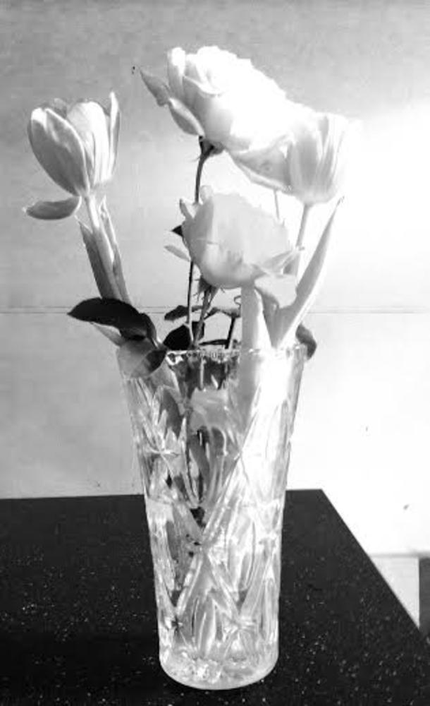 flower5 by sbestphotography
