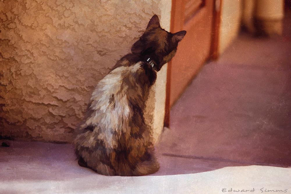 Waiting by Edward Simms