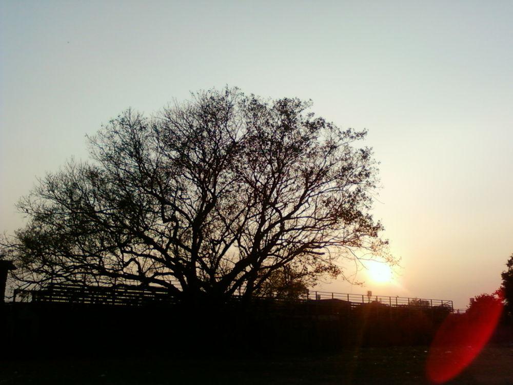 dusk... by Arka Sengupta