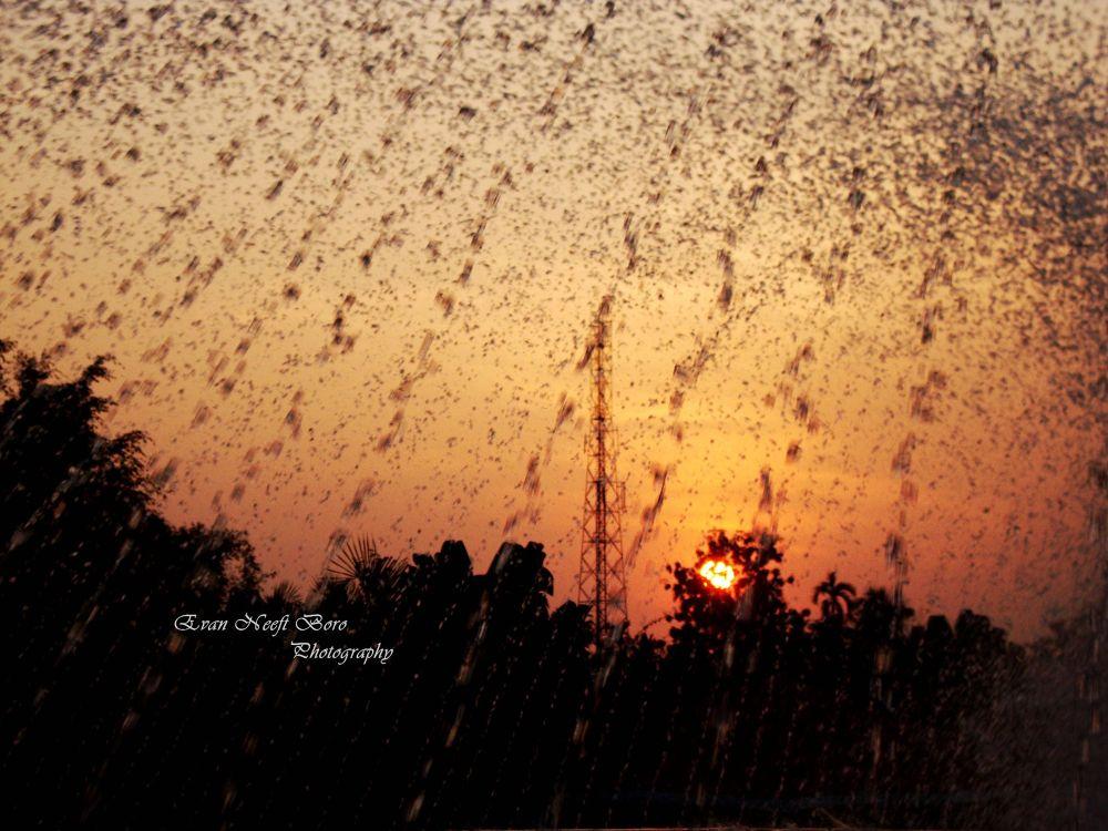 sunset amidst rain by evan737