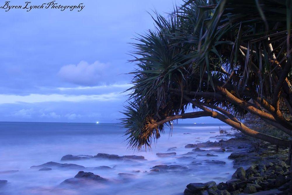 Alex Beach by Byron Lynch