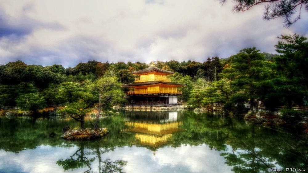 Kinkakuji - Golden Pavilion - Kyoto by stevebvitorio
