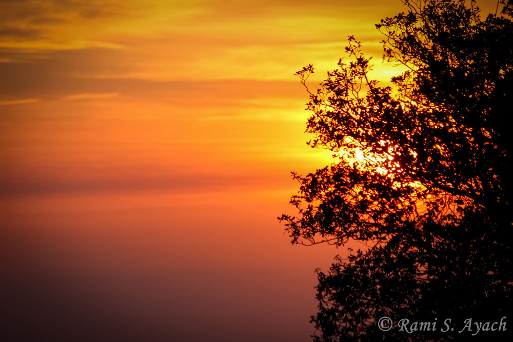 """""""I can't give you the sunset, but I can give you the night. by Rami Ayach"""