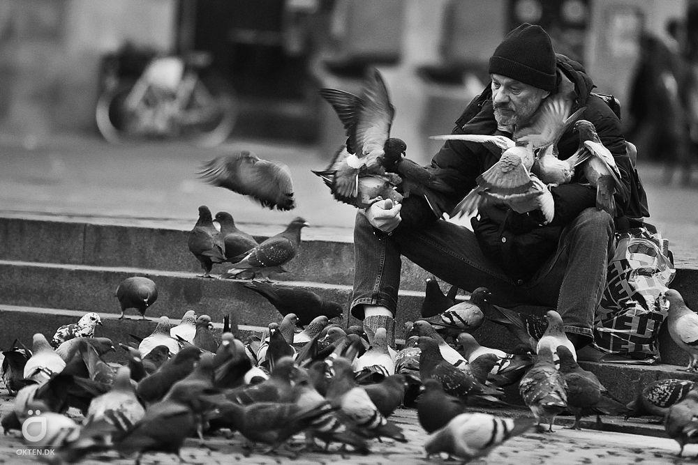 birdman by Tuncay Ökten