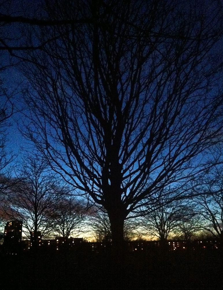 Winter night by Chris Poupazis