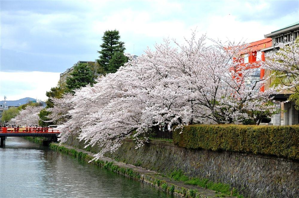 DSC_0904 by ryokoshim