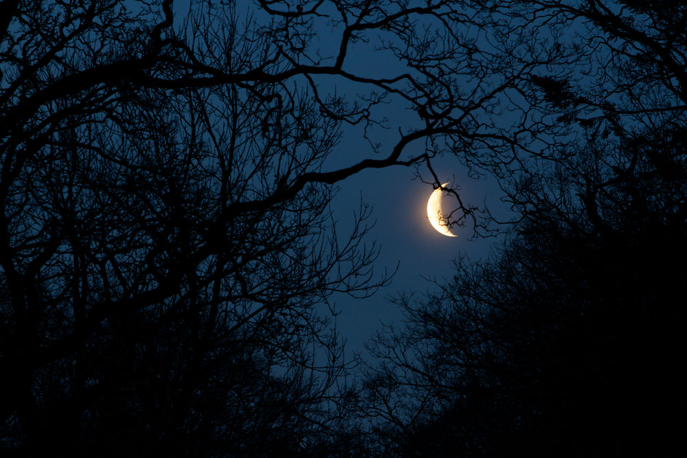 Crescent Morning Moon Rising _0008 by GrahamJRiddell