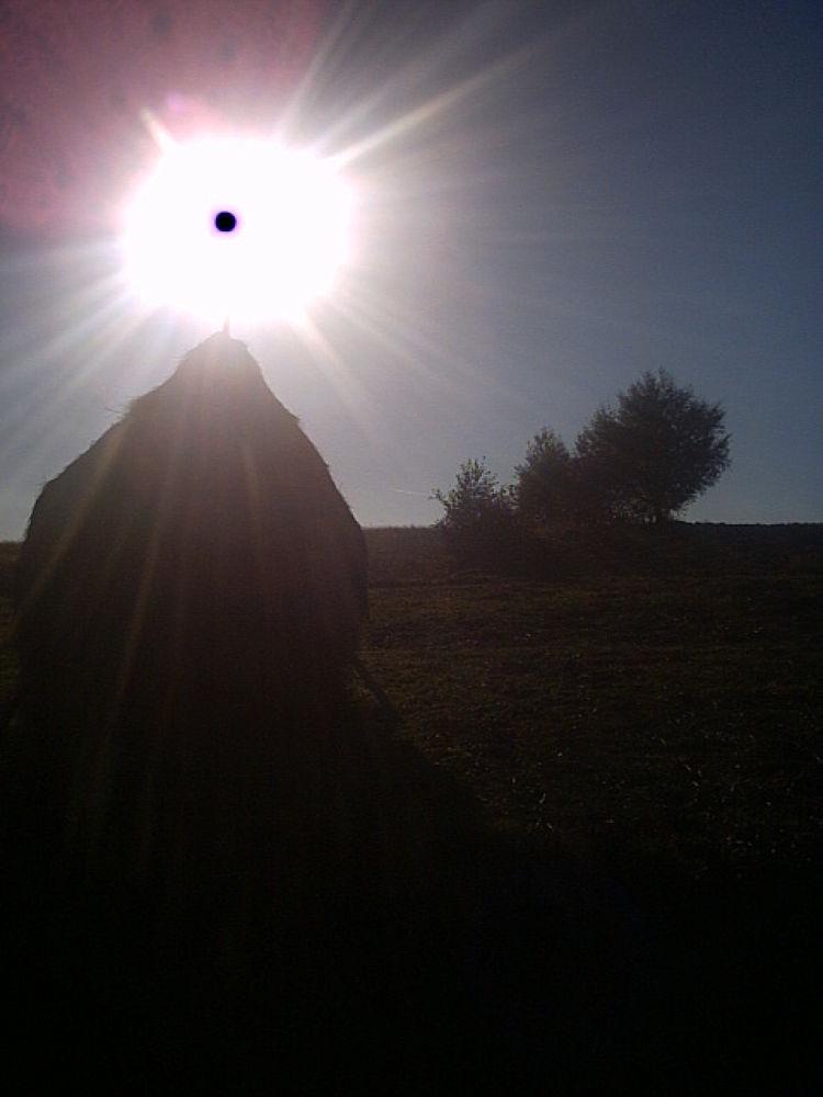 Sun resting on a hay pole by Daniela B. Buda