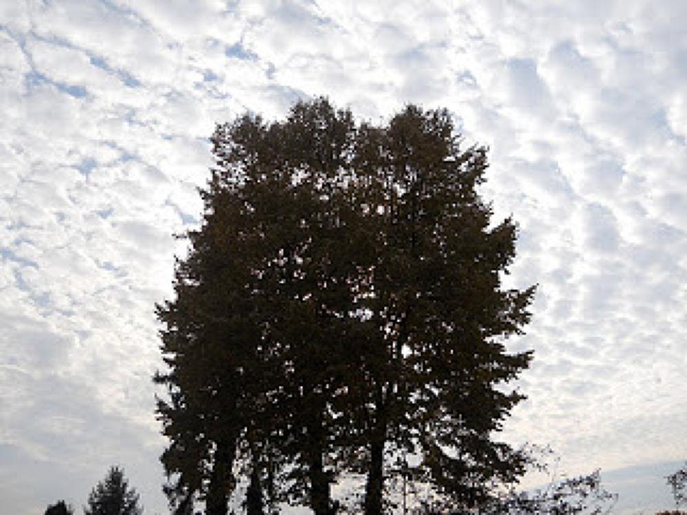 Autumn sky in Baia Mare by Daniela B. Buda