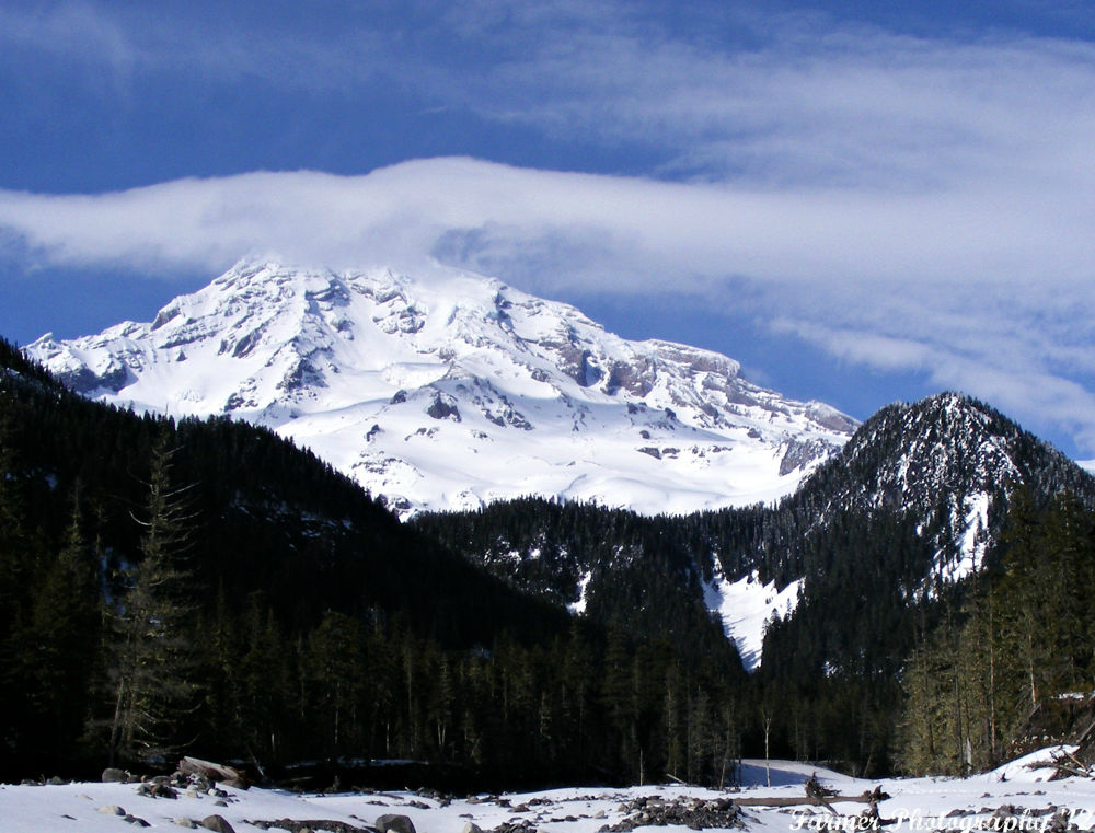 Mt. Rainer by Michelle Farmer