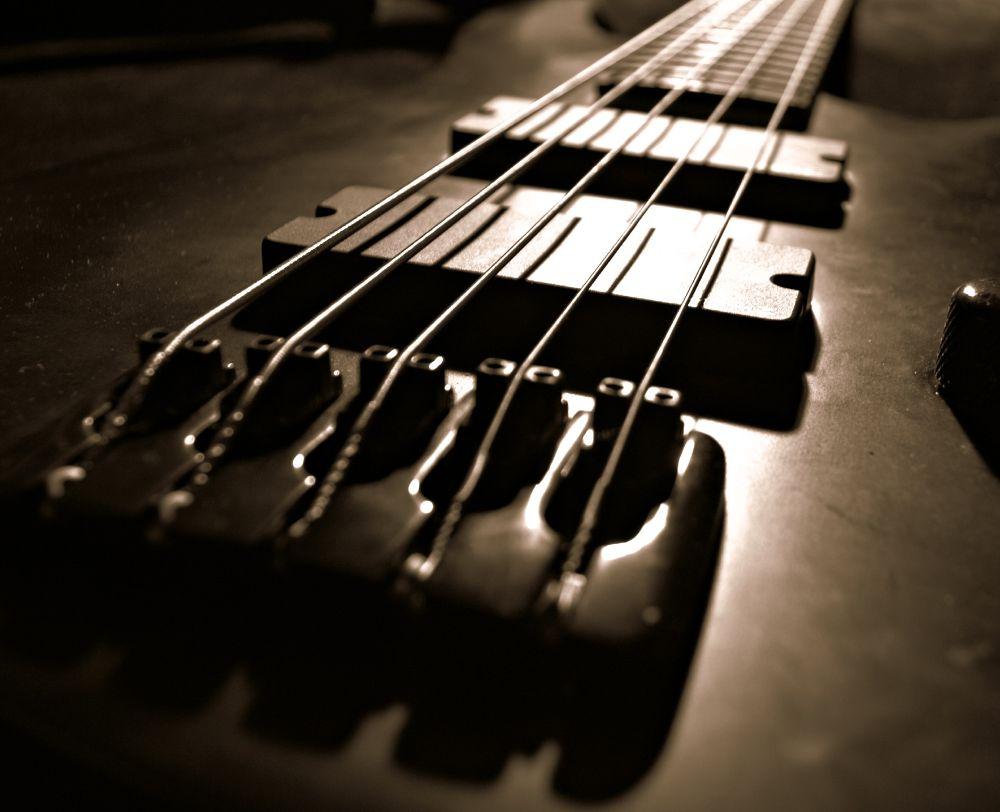 Bass by Michelle Farmer