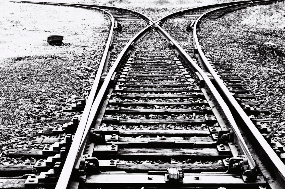 Tracks by Michelle Farmer