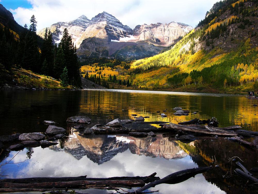 Reflections by Bill Hitz