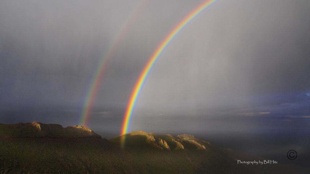 Two pots of Gold by Bill Hitz