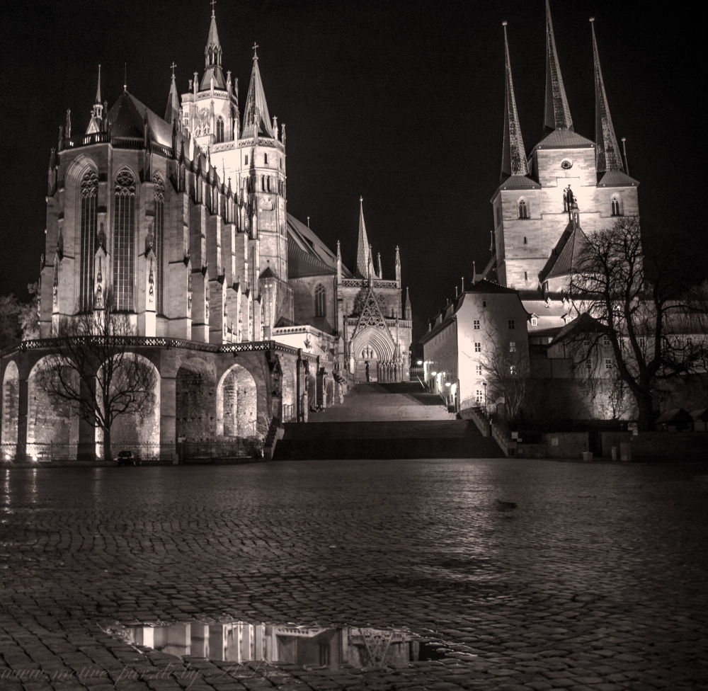 Erfurt by Alexandra Bode