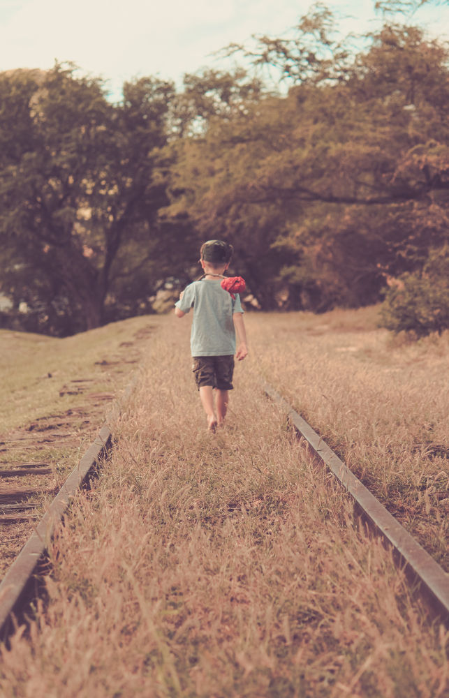 Lil' Wanderer  by Christal Gavin