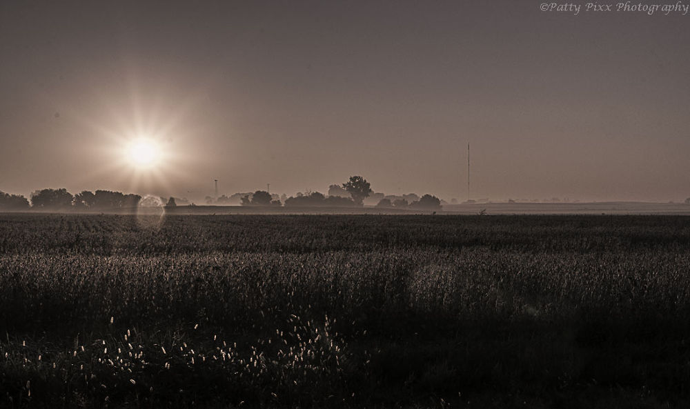Early Morning by pattypixxphotography