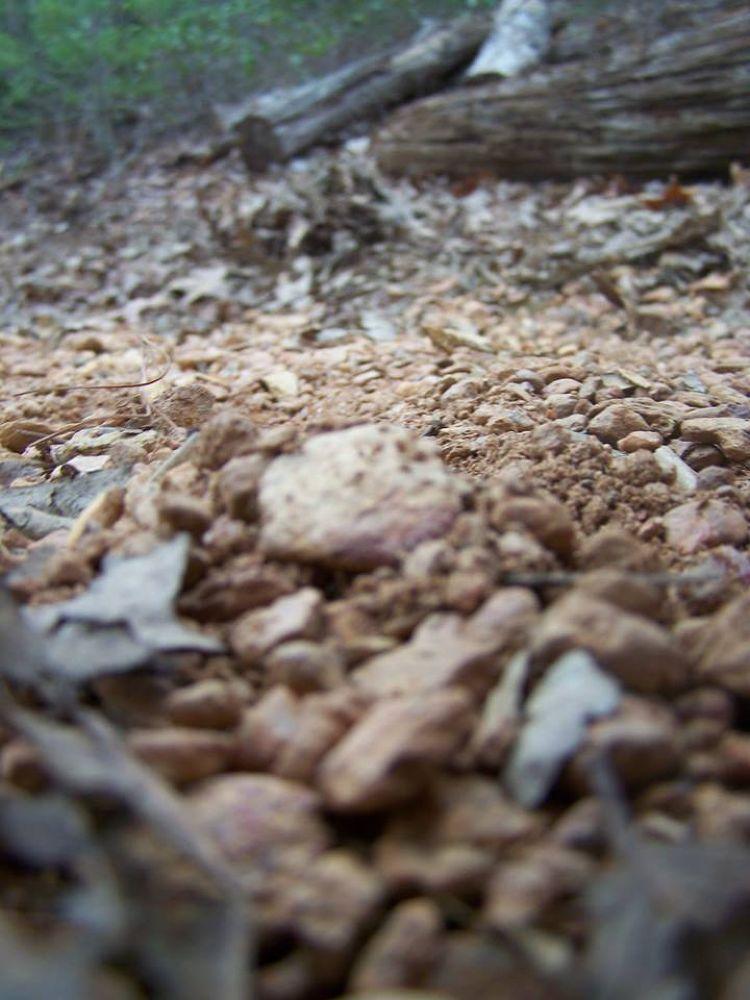 Fairystone Hunting.  by CheyenneD
