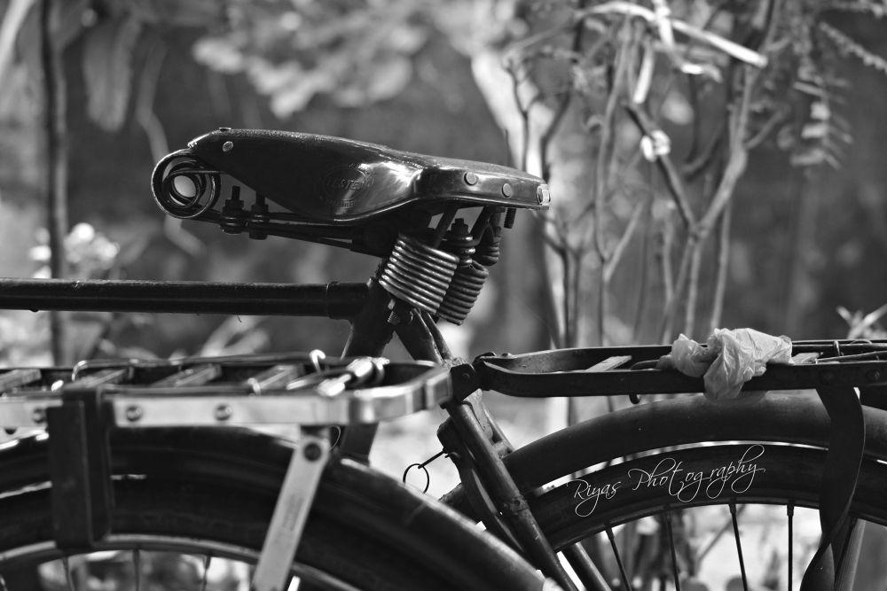 cycle by riyaaas