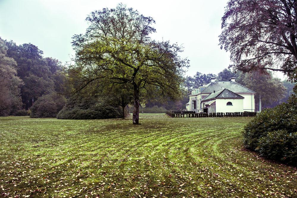 Manor by Chas Krijnen