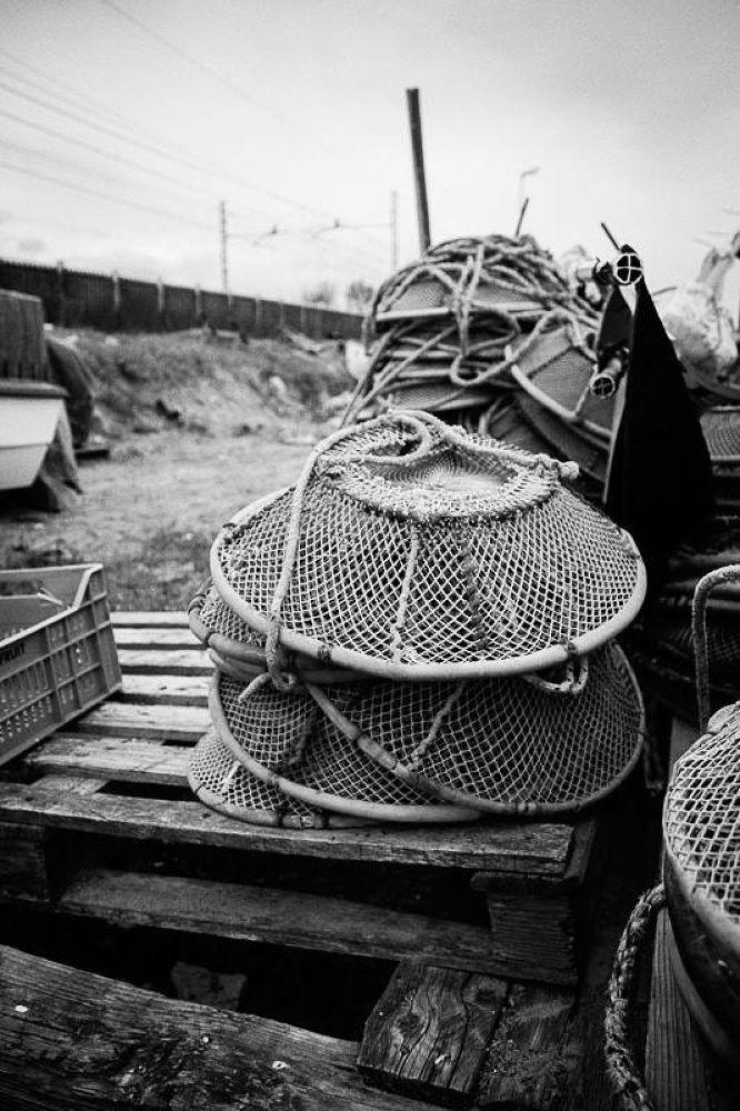 wastelands by Luca Belogi
