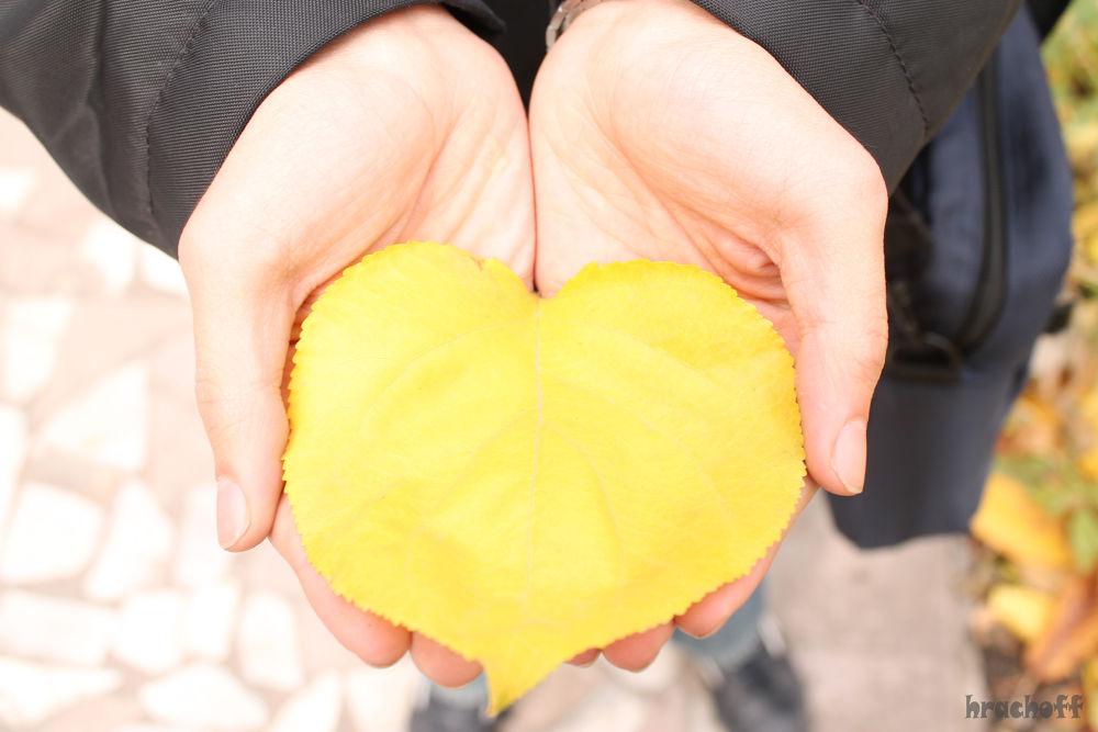 heart)):P by Hrach