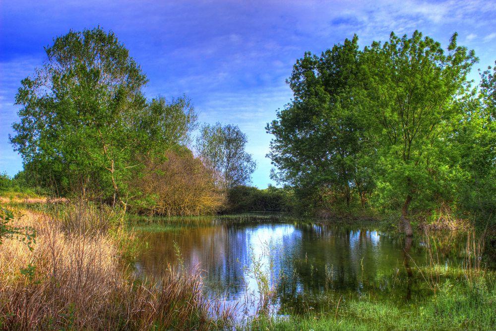 Little Lake by v_kekic
