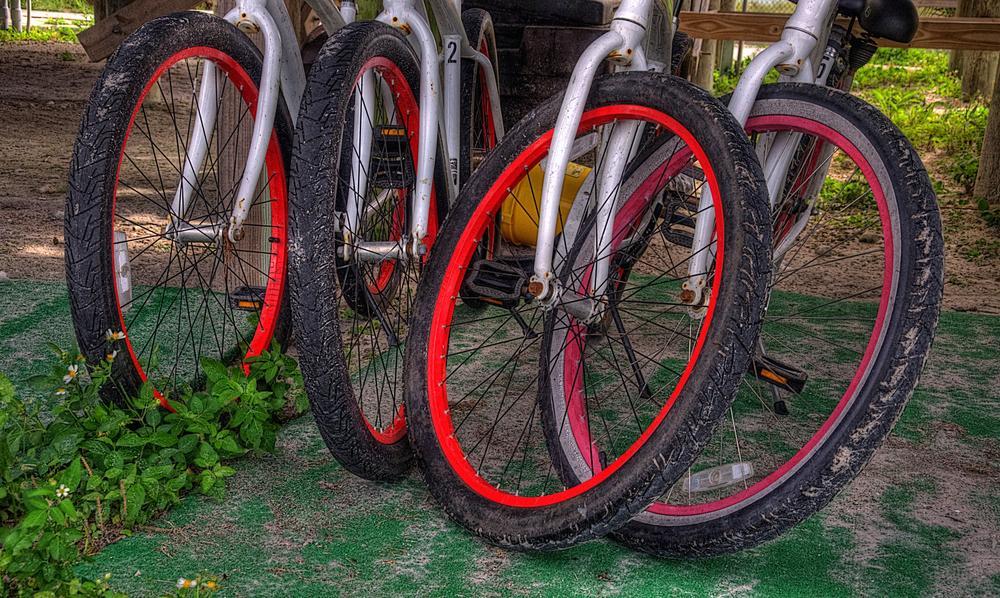 Wheels by Edward Allen