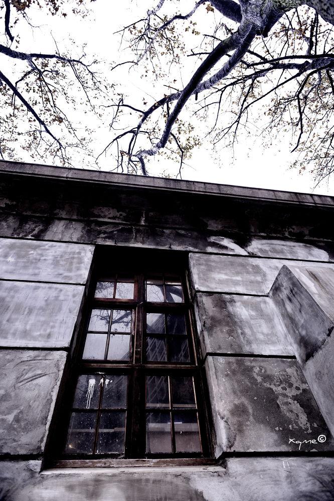 Mansion 豪門 by XQMe
