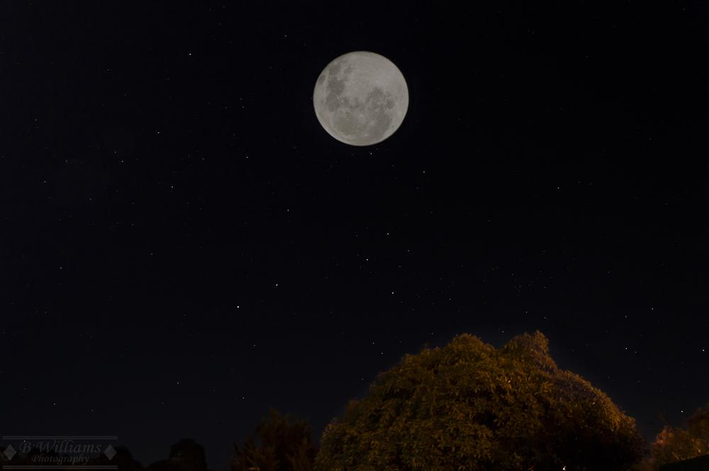 Photo in Astrophotography