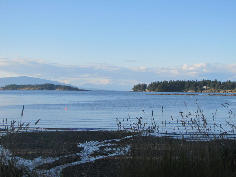 Pacific Ocean off of Rathtrevor Beach, BC by NancyTaylorMajor