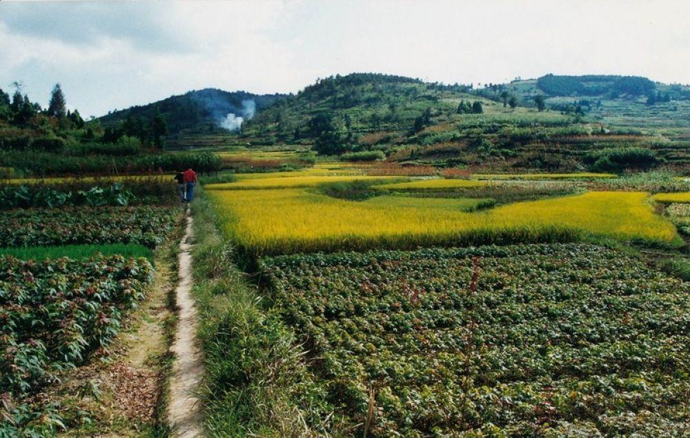Zhejiang_Tengtou_Village_1998-105 by Arie Boevé