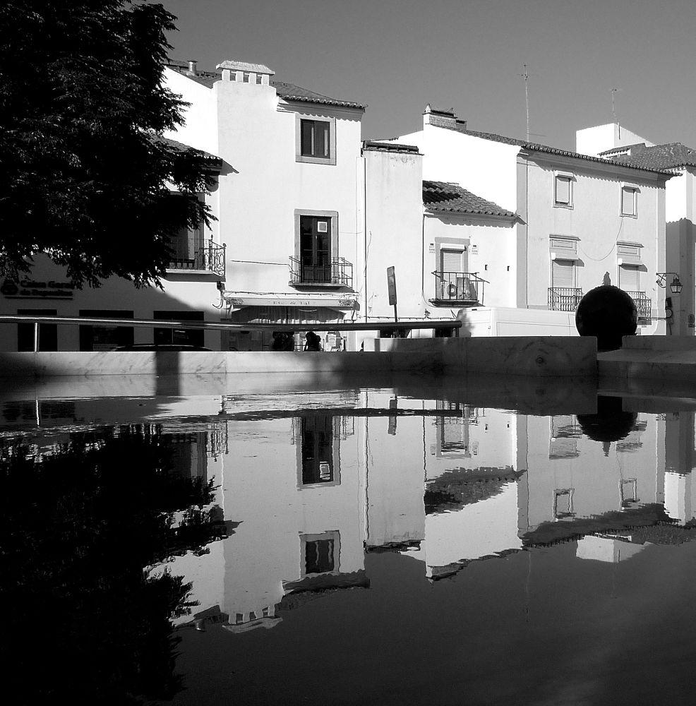 P1010224 by Luis Cutileiro