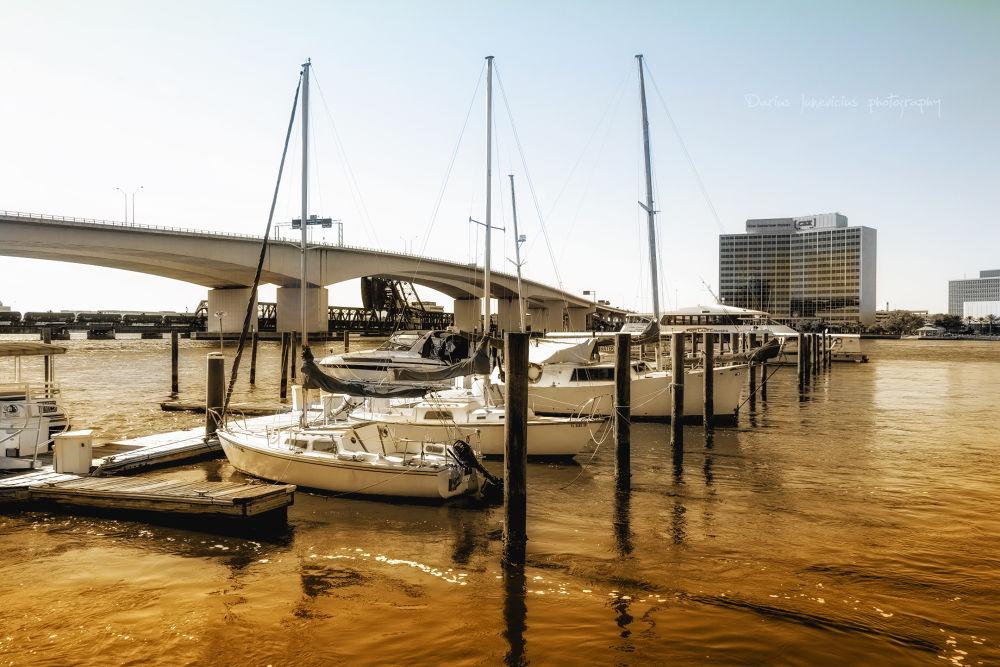 Jacksonville FL by Darius Junevicius