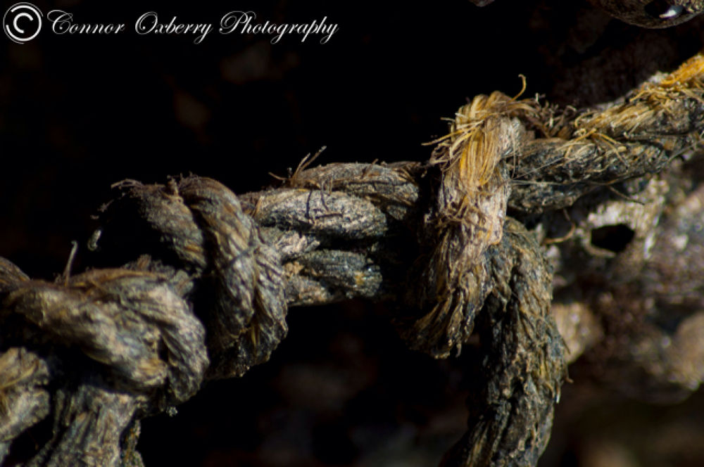 Rope by Connor Oxberry Photography