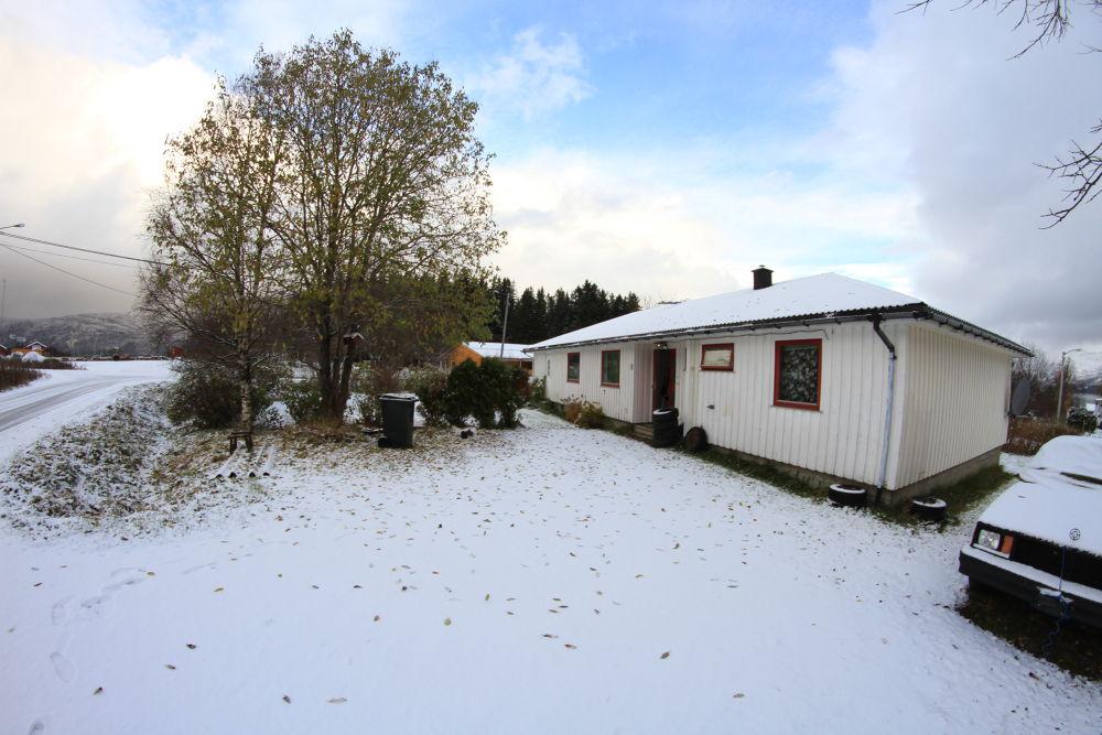 the first snow this winter, i wanna puke... brrrrrrrrrrr by vidar mathisen