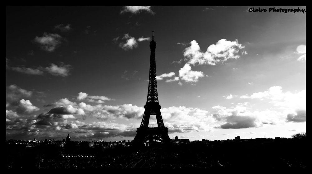 Paris by Claire Kuntz