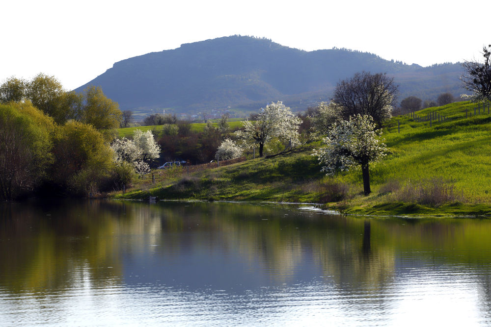spring on the lake by AliAltay