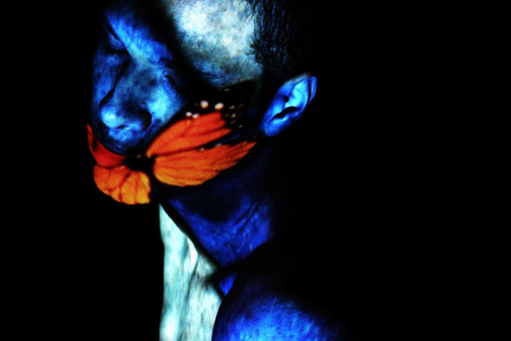 Butter Face Fly (Jeff, with light projection) by RaymondJordon
