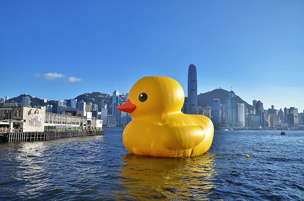 Duck In Hong Kong by Johnny_Suen
