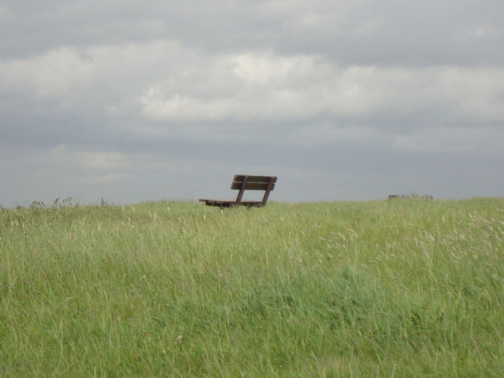 Lonely bench at Hampstead Heath by RaoniFrizzo
