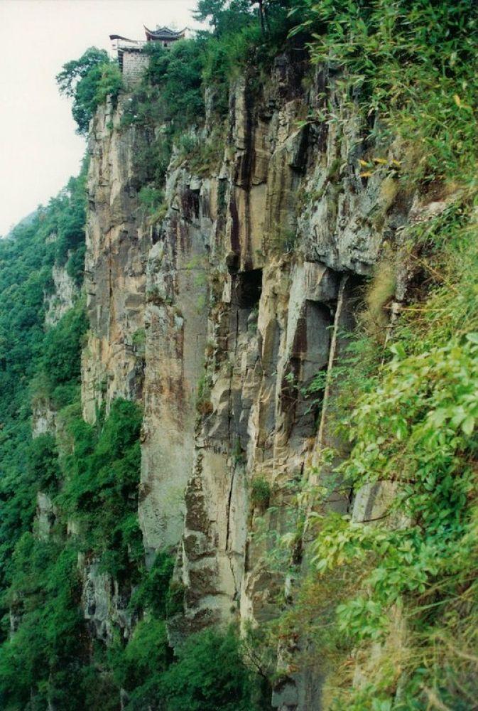 Zhejiang_Xikou_Mountain_Nurseries-114 by Arie Boevé