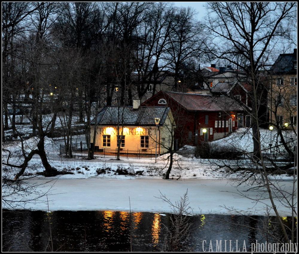 Winter in Sweden by CAmilla