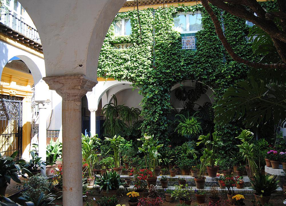 Typycal patio. Sevilla. Spain by DavidRoldan